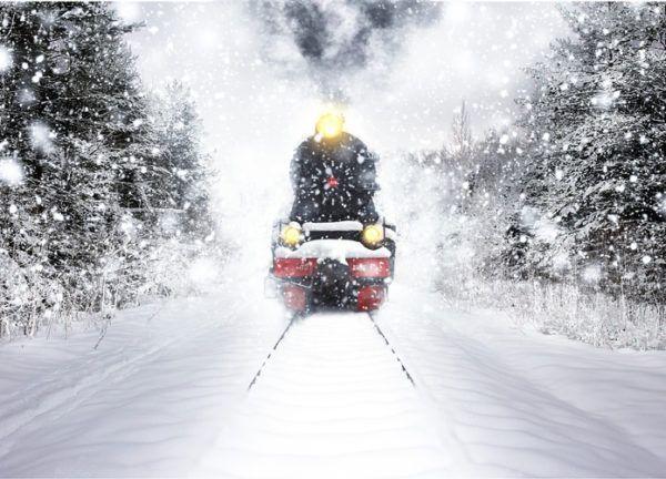 Tarjetas de navidad polar