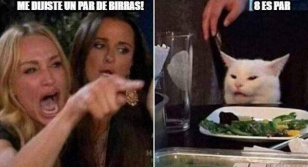 meme navidad gato