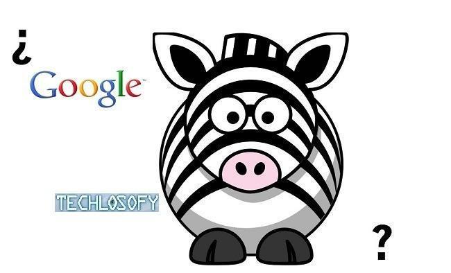 que-es-google-cebra-zebra