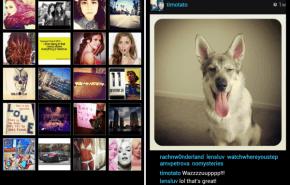Cómo publicar y subir fotos en Instagram