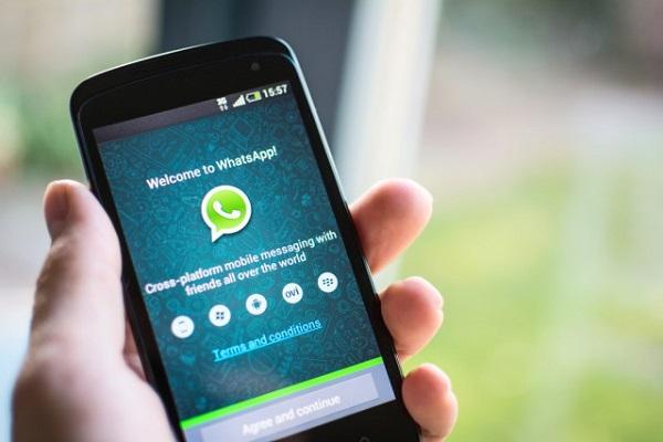 usando whatsapp